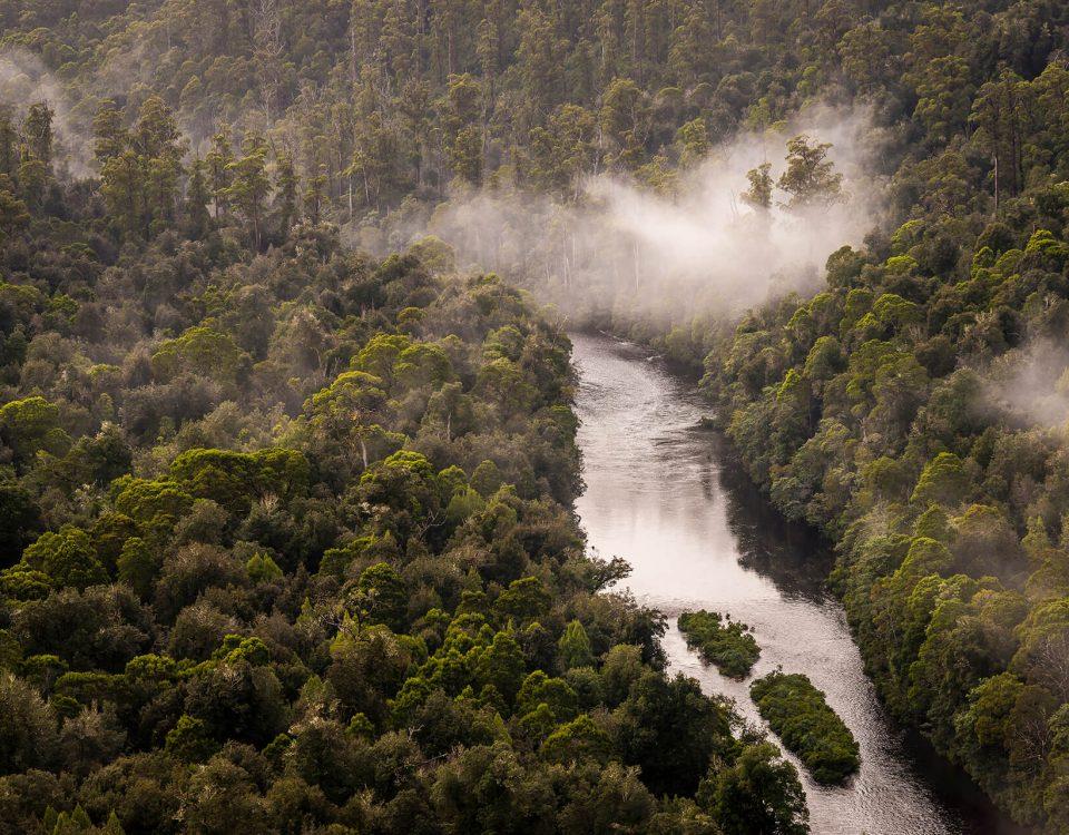 Arthur River, Tarkine Forest, Tasmanië