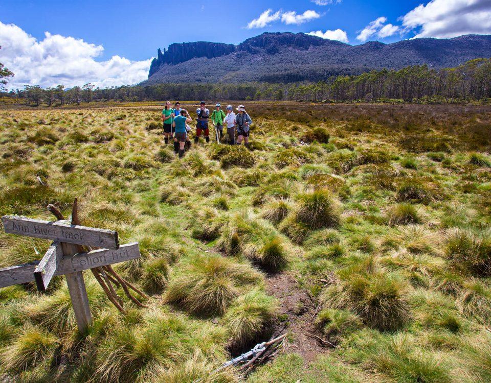 Overland Track, Tasmanië